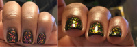 ILNP-Lovebird-Transition.png